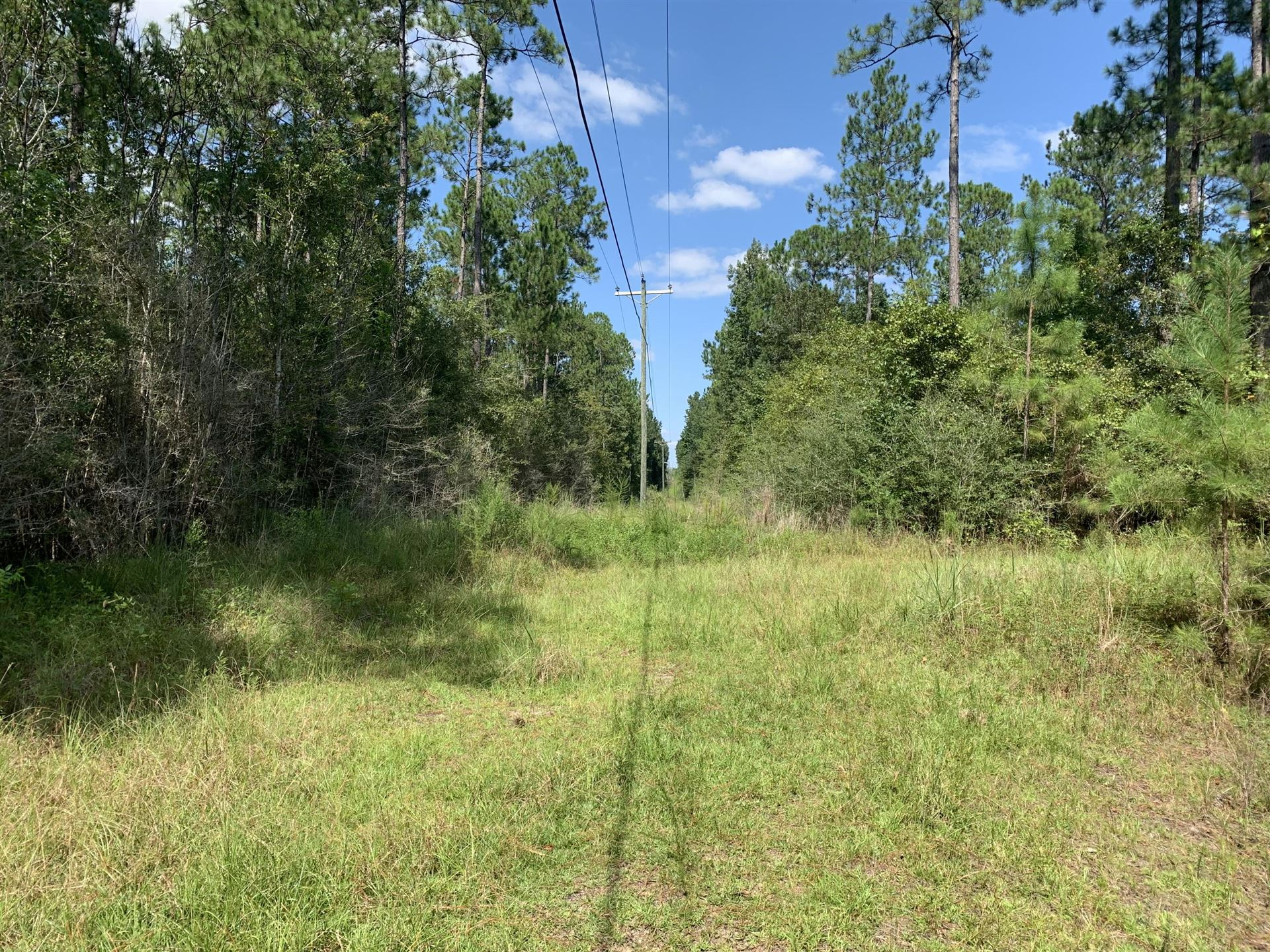 Photo of 56 ac MOL Red Hill Church Rd., Poplarville, MS 39470 (MLS # 127385)