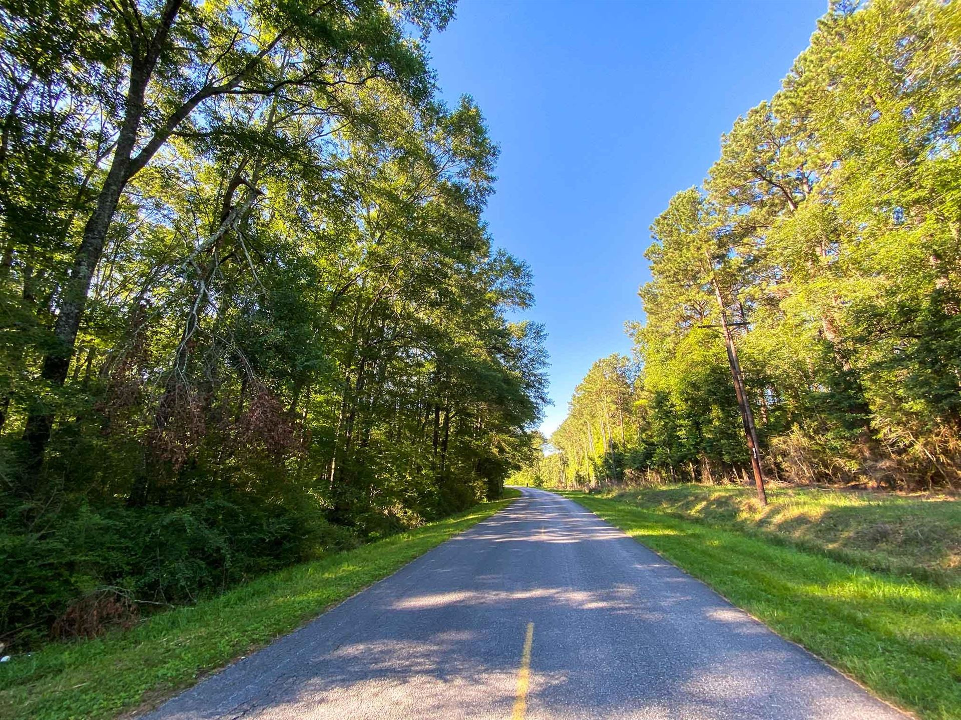 Photo of 12 Acres S C Rd. 1, Taylorsville, MS 39168 (MLS # 122406)