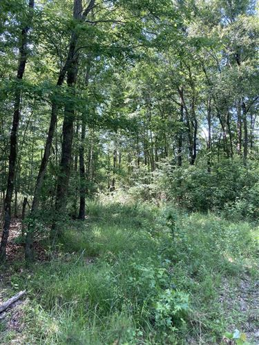 Photo of 2742 HWY 11, Moselle, MS 39459 (MLS # 125495)