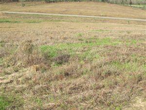 Photo of 113 Joan Drive, Ellisville, MS 39437 (MLS # 91538)