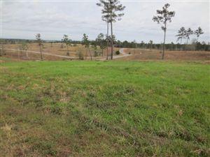 Photo of 6 Josie Drive, Ellisville, MS 39437 (MLS # 91544)