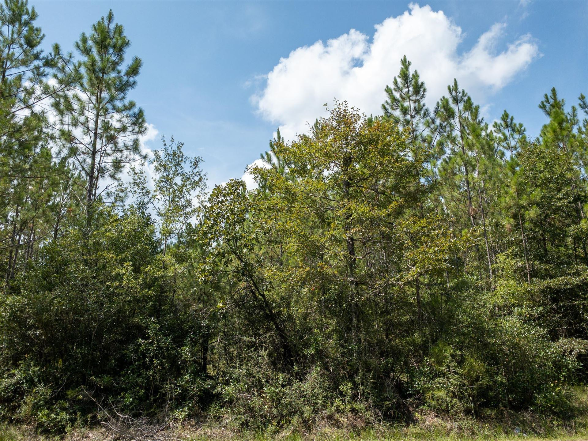 Photo of 40 Acres Kittrell Rd., Beaumont, MS 39423 (MLS # 126812)