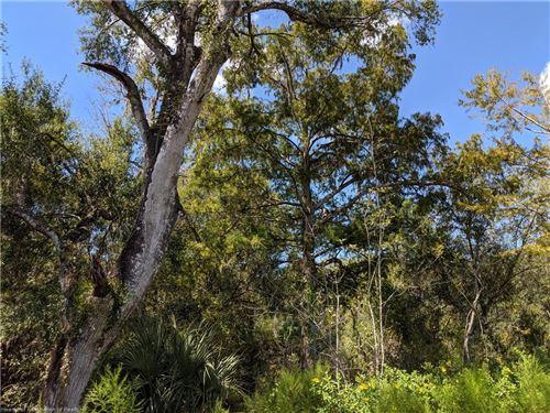 Photo of S US Hwy 17, Zolfo Springs, FL 33890 (MLS # 269827)