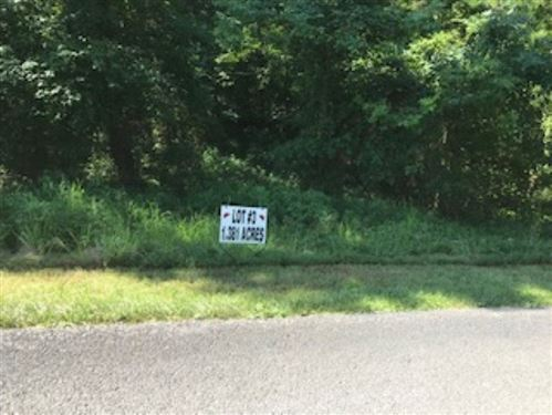 Photo of LOT 3 BLUEBERRY HILLS, STURGIS, KY 42459 (MLS # 20200334)
