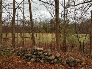 Photo of 166 Old North Road, Barkhamsted, CT 06063 (MLS # 170184001)