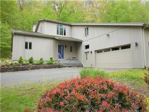 Photo of 43 Little Bear Hill Road, New Milford, CT 06776 (MLS # 170169006)
