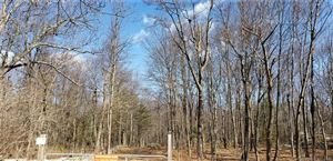 Photo of 196 County Road, Southington, CT 06489 (MLS # 170173017)