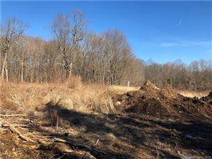 Photo of 62 Platts Hill Road, Newtown, CT 06470 (MLS # 170162019)