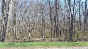 Photo of Lot 19-1 Cemetery Road, East Windsor, CT 06088 (MLS # 170061021)