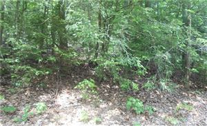 Photo of 35 Blue Ridge Mountain Drive, Somers, CT 06071 (MLS # 170101027)