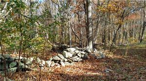 Photo of M52 L2 Mill Rock West Road, Old Saybrook, CT 06475 (MLS # 170112049)