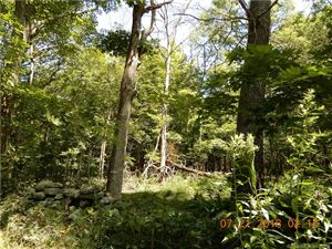 Photo of 1 South Bear Hill Road, Chaplin, CT 06235 (MLS # 170108057)