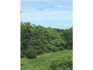 Photo of 8689 Poplar Hill Drive, Farmington, CT 06032 (MLS # G10231066)