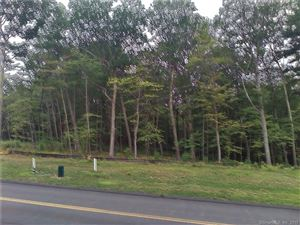 Photo of 56 Saw Mill, Burlington, CT 06013 (MLS # 170225082)