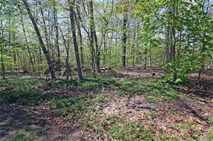 Photo of 46A Melody Lane, Essex, CT 06426 (MLS # 170193090)