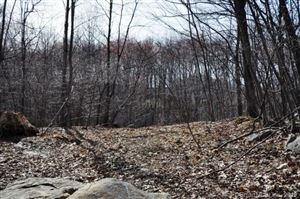 Tiny photo for 21 Roy Mountain Road, Prospect, CT 06712 (MLS # 170178099)