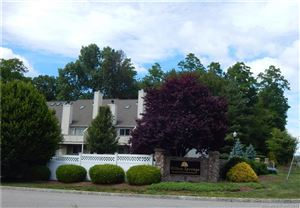 Photo of 253 Willow Springs #253, New Milford, CT 06776 (MLS # 170117101)