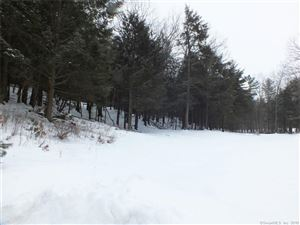 Tiny photo for 54 Indian Cave Road, Salisbury, CT 06068 (MLS # 170052103)