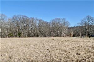 Photo of 52 Tommys Path, North Branford, CT 06472 (MLS # 170057110)