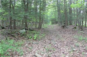 Photo of 0 Old Mine Road, New Milford, CT 06776 (MLS # 170085114)