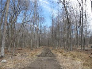 Photo of LOT#4 Victoria Lane, Marlborough, CT 06447 (MLS # G10139132)