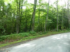 Photo of 0 Beach Hill East Road, Bridgewater, CT 06752 (MLS # 99114134)