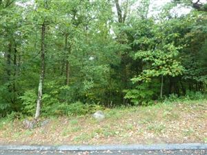 Photo of 127 Holcomb Hill Road, New Hartford, CT 06057 (MLS # 170065143)