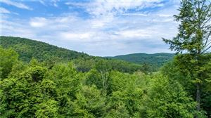 Photo of 0 Valley Road, Cornwall, CT 06754 (MLS # 99190157)