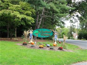 Photo of 142 Woodland Drive #142, Cromwell, CT 06416 (MLS # 170132160)