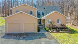 Photo of 140 Candlewood Mountain Road, New Milford, CT 06776 (MLS # 170176160)