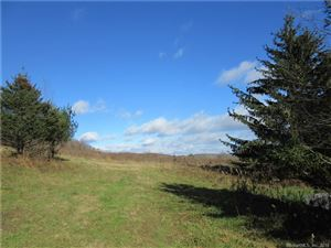 Photo of 4993 Route 22 #Lot 4, Amenia, NY 12501 (MLS # 170096181)