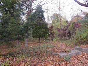 Photo of 161 Pecksland Road, Greenwich, CT 06831 (MLS # 170148188)
