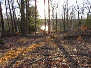 Photo of 96 Lakeside Drive, Eastford, CT 06278 (MLS # 170074189)