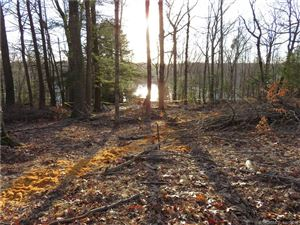 Photo of 96 Lakeside Drive, Eastford, CT 06278 (MLS # 170074189)