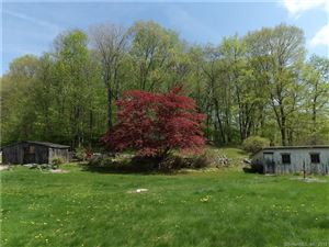 Photo of 180 Park Road, Oxford, CT 06478 (MLS # 170083192)