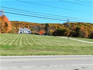 Photo of 2682-2684 Route 22, Patterson, NY 12563 (MLS # 170097193)