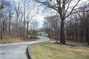 Photo of 190 Blueberry Hill Road, Bridgewater, CT 06752 (MLS # 170061196)