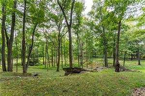 Tiny photo for 50 South Road, Kent, CT 06757 (MLS # 170129201)