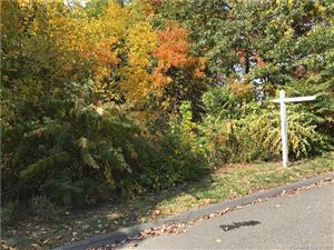 Photo of 0 Traverse Street, Waterbury, CT 06701 (MLS # 170060207)