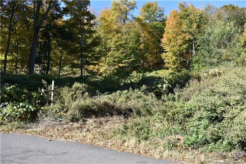 Photo of 35 Silver Hill Road, Ansonia, CT 06401 (MLS # 170348212)