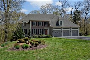 Photo of 44 Nutmeg Circle, Colchester, CT 06415 (MLS # 170153213)