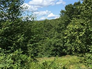 Photo of Lot 1 Davenport Road, Roxbury, CT 06783 (MLS # 170120219)