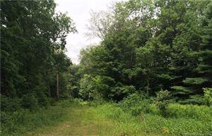 Photo of 226 Goose Lane, Tolland, CT 06084 (MLS # 170055220)