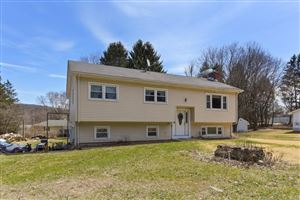 Photo of 25 Flower Hill Road, New Milford, CT 06776 (MLS # 170069233)