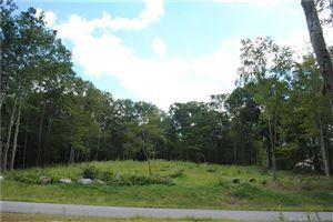 Photo of 19 Zoldak Drive, Windham, CT 06256 (MLS # 170056244)