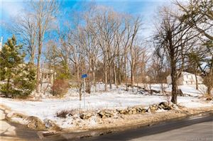 Photo of 43 Castle Hill Drive, Bethel, CT 06801 (MLS # 170164247)
