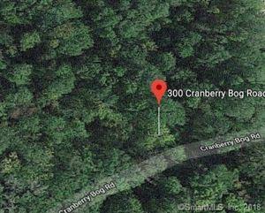 Photo of 300 Cranberry Bog Road, Killingly, CT 06239 (MLS # 170083267)