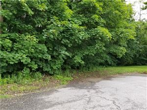 Photo of 13 Christine Street, Torrington, CT 06790 (MLS # 170059268)