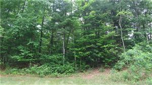Photo of 37 Cider Mill Heights, Granby, CT 06060 (MLS # 170081278)