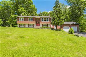 Photo of 172 Mott Hill Road, East Hampton, CT 06424 (MLS # 170059283)